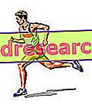 栄養補助食品、マラソン、3月