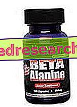 Beta αλανίνη - ULTIMATE ΔΙΑΤΡΟΦΗ