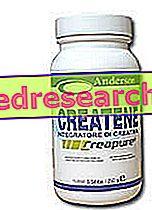 Createne - Anderson