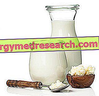 Kefir: Ravitsemukselliset ominaisuudet, rooli ruokavaliossa ja R.Borgaccin syöminen