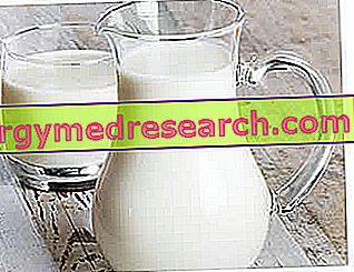GSO ali ne-GSO?  - GSO v mleku, derivatih in več