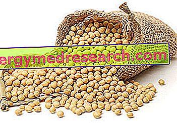 Legumbres y proteínas.