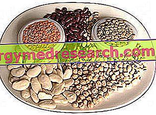 Peulvruchten: functies, voordelen en nutritionele eigenschappen
