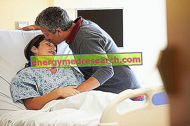 頸動脈内膜剥離術:術後フェーズ