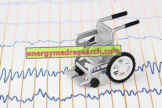 Kardiomiopatija i mišićna distrofija