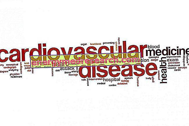 1998 से 2007 तक: होमोसिस्टीन और हृदय रोग