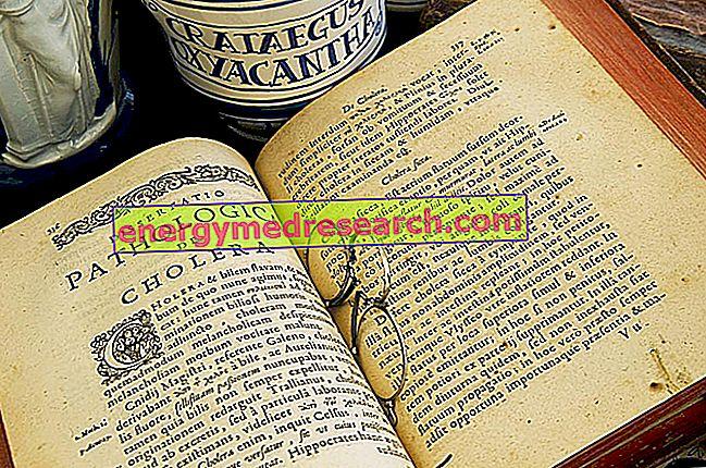 Koleras ursprung är födelsen av modern epidemiologi