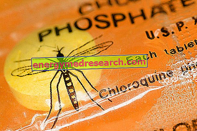 Sıtma nasıl önlenebilir?