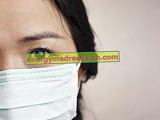 Hvorfor er fugleinfluensa en årsak til bekymring for mennesker?