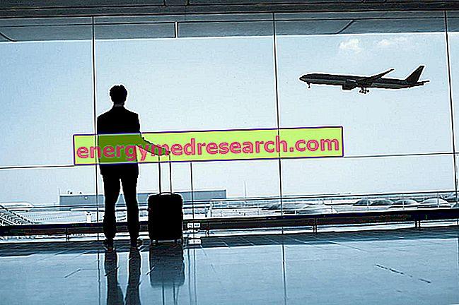 Enfermedades del viajero: riesgos a considerar.