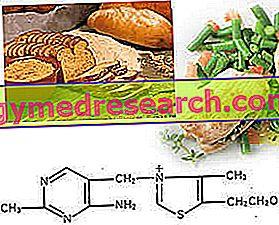 Tiamiini tai B1-vitamiini
