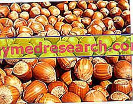 Manganês: funções e alimentos