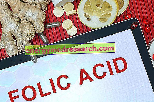 Berapa banyak asam folat yang diserap?