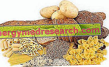 A szénhidrátok fontossága az étrendben