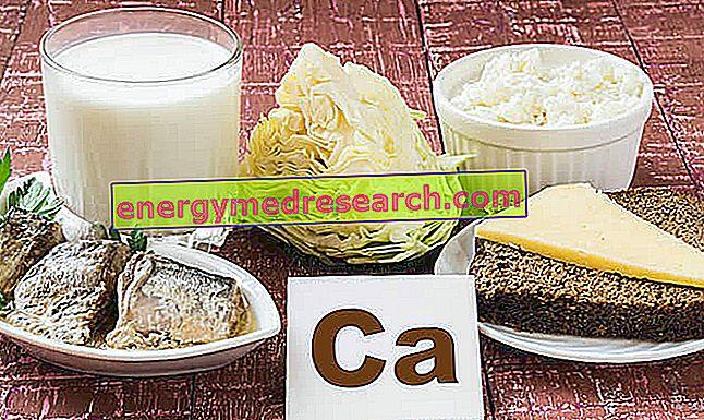 Makanan kaya kalsium