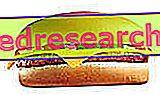 Diät-induzierte Thermogenese