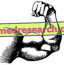 Svalová hypotrofie, index tělesné hmotnosti a riziko mortality
