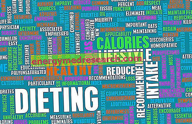 Populaire diëten, obesitas en gezondheid