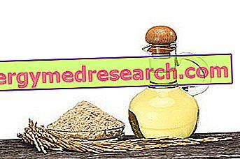 Масло из рисовых отрубей от R.Borgacci