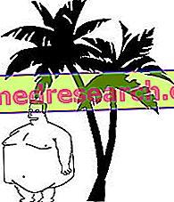Tropiniai aliejai ir riebalai