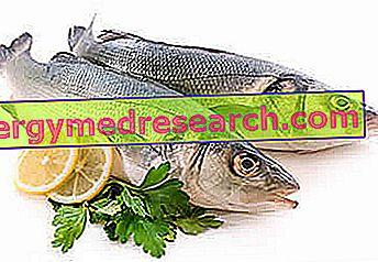 Свежая рыба и ее консервирование