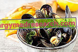Sinisimpukat: Ravitsemukselliset ominaisuudet, rooli ruokavaliossa ja R.Borgaccin kokki