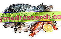 Kenali ikan segar dari yang manja