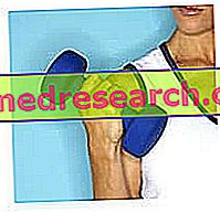 Strava a telocvičňa motivácia, nájsť a podporiť svoju motiváciu!