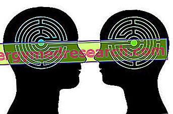 Эмоциональный интеллект: что это?  Для чего это?  I.Randi Особенности и модели