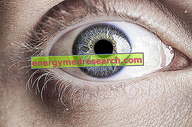 ¿Qué son los bancos de ojos?