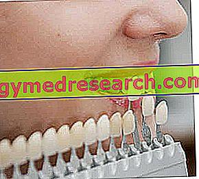 Lapisan gigi