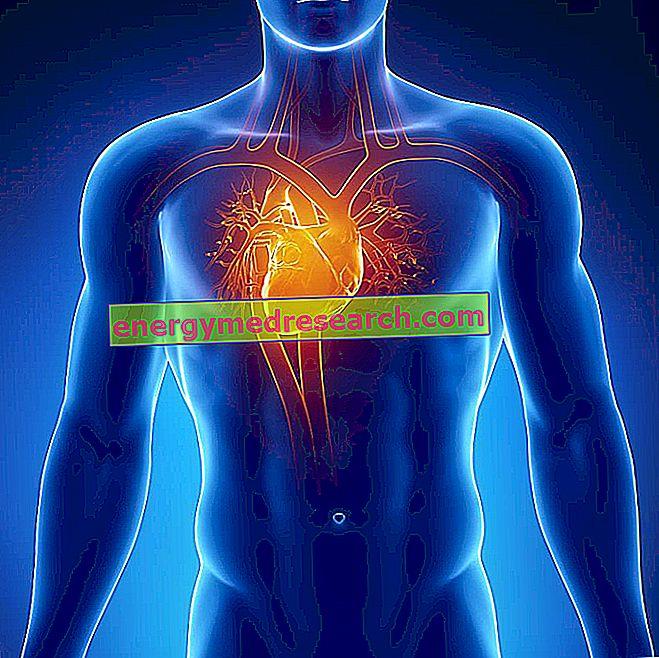 Dystrocardia, asymptomatická anomálie nebo ne?