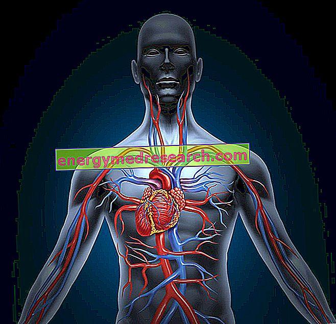A dextrocardia szövődményei