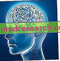 Smegenų edema