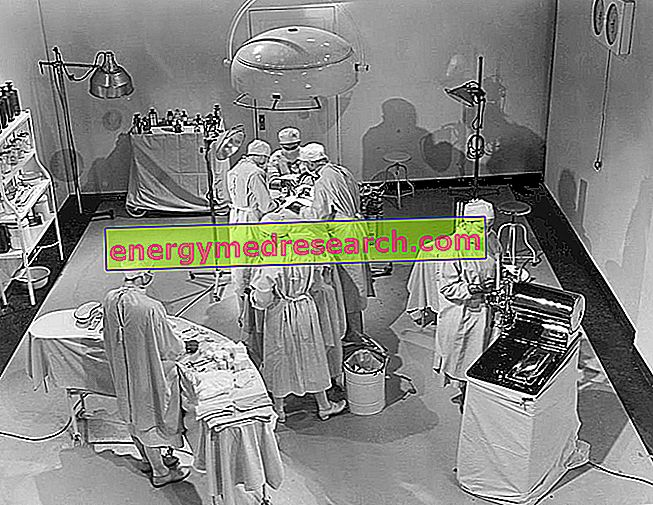 Presaditev jeter: zgodovina postopka