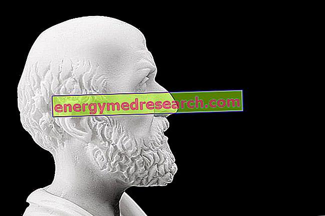 اعتلال الدماغ الكبدي: تاريخ المرض