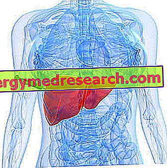 Biópsia hepática: riscos, complicações e preparação
