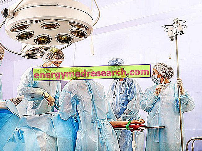 Májtranszplantáció: az élő donorral kapcsolatos eljárás részletei