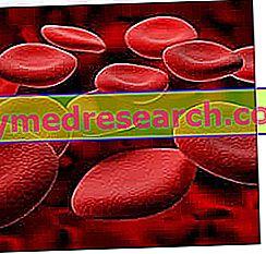 Hemofili - Diagnose og behandling