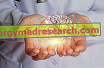 Mioklonie: Vad är de?  Karakteristik och orsaker till G.Bertelli