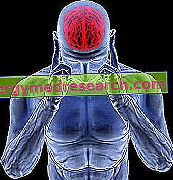 ADEM - Disseminert akutt encefalomyelitt