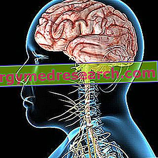 Neurološke bolesti A.Griguola
