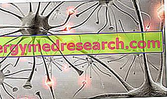 ALS - Scleroza laterală amiotrofică