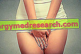 anorexiás meleg szex pénisz képgalériák