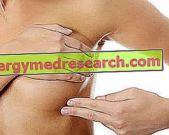 Autopalpação da mama