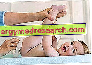 Paidocosmetici for the Diaper Area - Children's Cosmetics