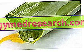 Intertrigo: Natural Remedies
