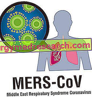 Artimųjų Rytų kvėpavimo sindromas (MERS)