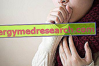 Mycoplasma Pneumoniae: что это?  Передача, симптомы и диагностика Г. Бертелли