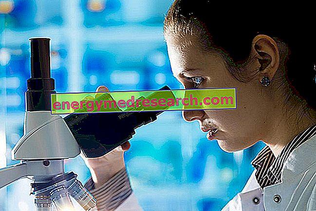 Ventajas y desventajas de los diversos métodos de biopsia pulmonar.